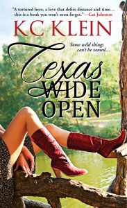 Texas wide open e-book (2) (489x800)